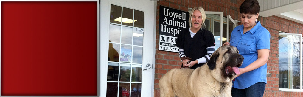 Howell Animal Hospital in NJ